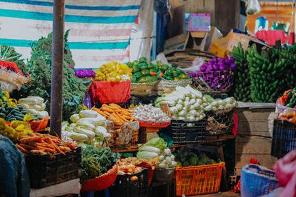 Vegetable / Fruit Shop Billing Software